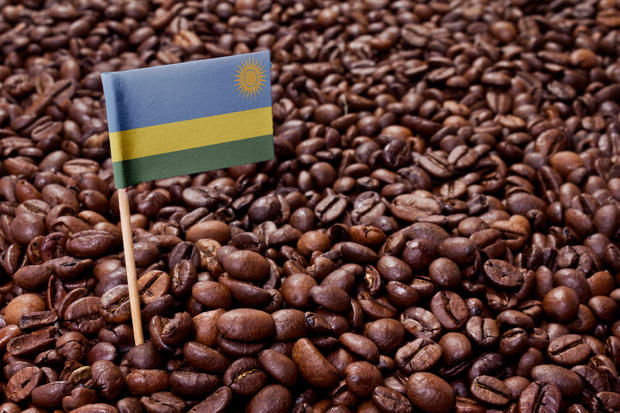 The flag of Rwanda sticking in roasted coffee beans.(series)