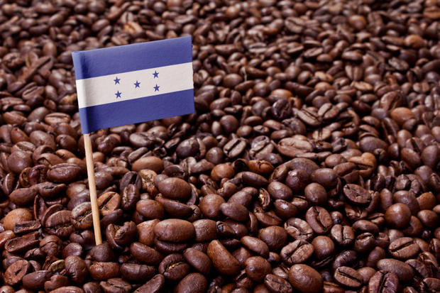 The flag of Honduras sticking in roasted coffee beans.(series)