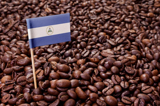 The flag of Nicaragua sticking in roasted coffee beans.(series)