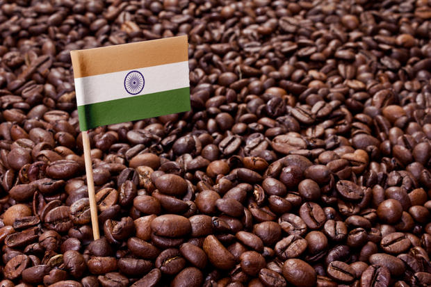 The flag of India sticking in roasted coffee beans.(series)